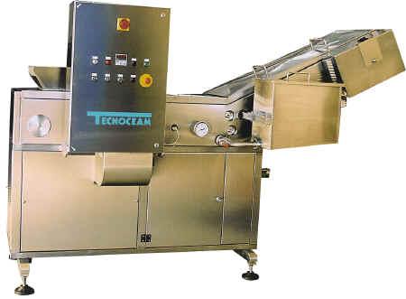 Tecnoceam macchine per la lavorazione delle verdure e della frutta - Sala marocchina usata ...