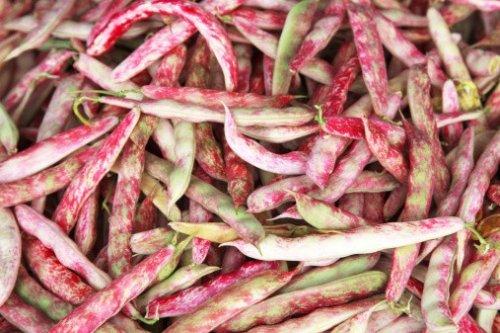fagioli-borlotti-legumi-178060659