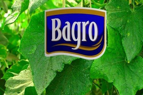 1   Bagro Pickle Company
