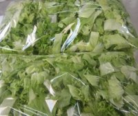 6 Salad Packed Bags  (Small)